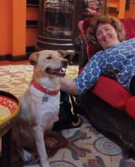 Me and rescue dog Clarence, Chiang Mai