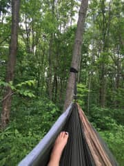 Favorite thing to do...my hammock will come with me!