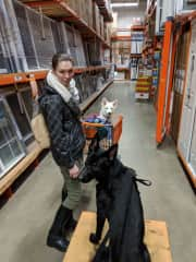 Renovating our house requires many trips to Home Depot with Severus and Kilala