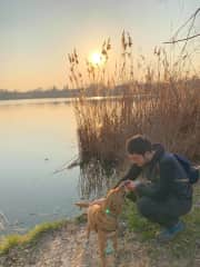Evening walk around the lake with Franky.