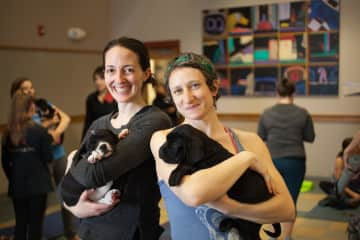 Me and a friend at Pilates with Puppies!
