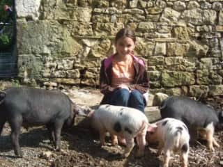 My daughter with our pigs in 2010