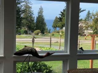 View of the Salish Sea from home. 5-minute walk to the beach