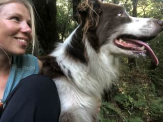 Diesel and I on a hike in the Redwoods (5th housesit in Alameda)