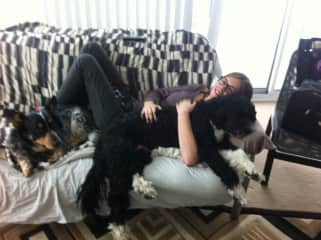 Having a snuggle with both dogs