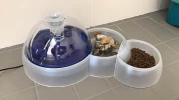cat feeder, to be washed everyday. wet food & dry food served twice a week