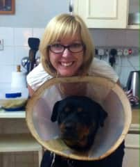 Making the best of the cone of shame.