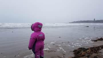 St Andrews beach in February, tough girl...