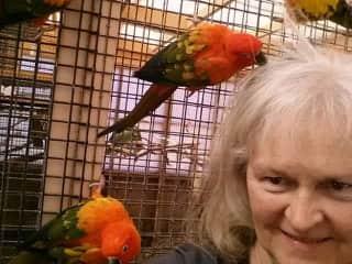 Volunteering at Best Friends animal sanctuary