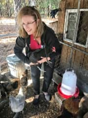 Caring for chicken in SC. Eggs forever! Wadmalaw Island