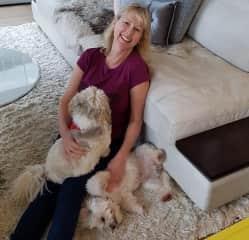 Liz Housesitting with Gidget and Meatball