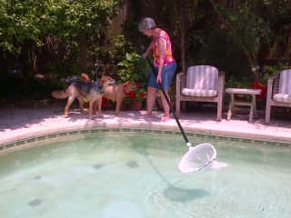 Cleaning the pool with 2 pals in Atlantic Beach, Florida!