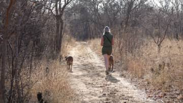 Ilse walking with India and  Storm (Boerboel) during our lodge sitting in South Africa.