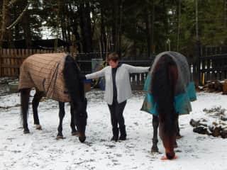 Eileen, Hobart and Bella - cuddles and carrots at xmas