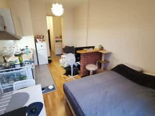 Living room, kitchen and bedrooom from another angle