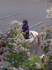 Michelle riding