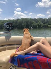 My brothers big Marley loves me and the lake!