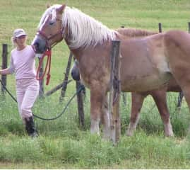 With my champion Mae a few years back. / Ma jument, championne de conformité, dans les années 2000.