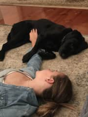 Our daughter Cate and our beautiful labrador Max; best mates.