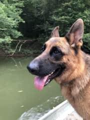 Oakley on a boat ride