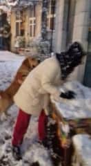 Enjoying a snow day in Lesvos