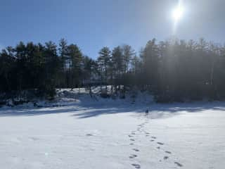 View from the frozen lake