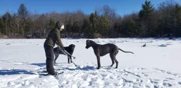 Fun on a snowy hike across the pond.