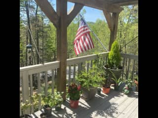 Deck and SOME of my plants