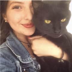 My big cat. :D
