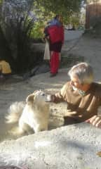 My dear, sweet partner, Laurie greeting a temple dog in India