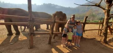 Elephants at a sanctuary in Thailand