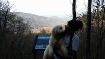I love hiking - the woods and mountains are my happy place. Especially with a pup or two (or more!).