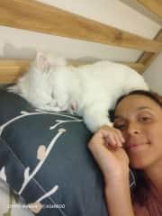 Always sleeping above my head :-)