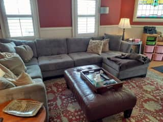Comfortable family room for entertainment and hanging with pets