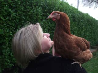 One of my sisters hens (and me!)