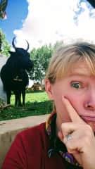 I love yaks!!