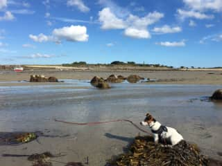 Jerry on Grande Harve beach at low tide
