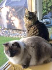 Mogi and Rudy