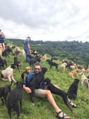 Mat at Territorio de Zaguates dog sanctuary in Costa Rica
