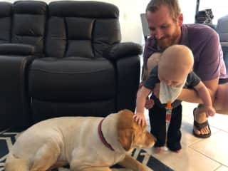 Rowan and Daddy meeting Goldie