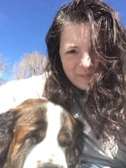 Lily the St. Bernard.  I lifted her in the truck to go to the vet day 1 and then cooked for her to nurse her back to health the rest of the sit + she was in heat + took care of the 6 others, including a Great Dane!  Exhausting, but she was grateful!