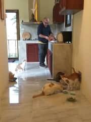 Feeding time with Jeffrey, Jamie, Jojo, Tabs and Josh