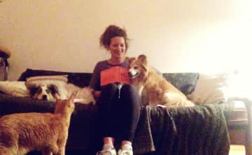 Julia's multi-tasking skills in housesitting with two cats and two dogs ;-)