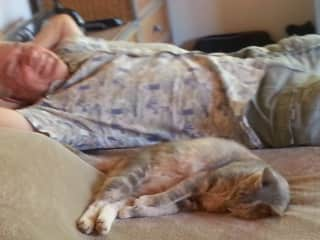Dusey napping with Dennis