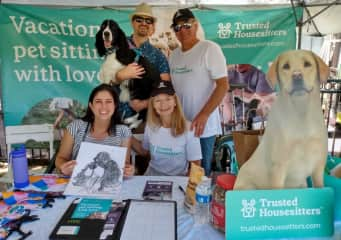 As Ambassadors for TrustedHousesitters, we host fun dog events to promote the wonderful community of TrustedHousesitters.