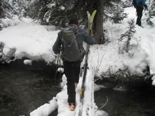 We love cross-country skiing through the forest.