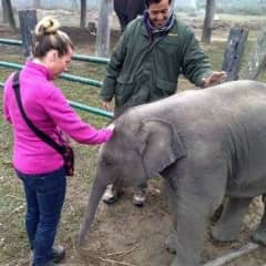 Jenny with baby elephant in elephant sanctuary Chitwan National Park, Nepal