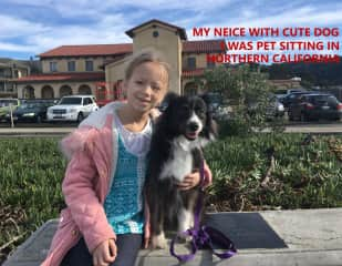 My niece visiting me and cute pup on pet sit in Northern California