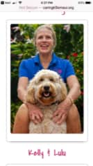 With my trained Therapy Dog- a Goldendoodle- Lulu