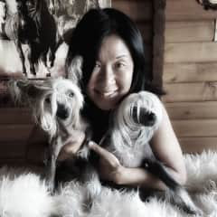A sweet and exotic Chinese Crested dual.